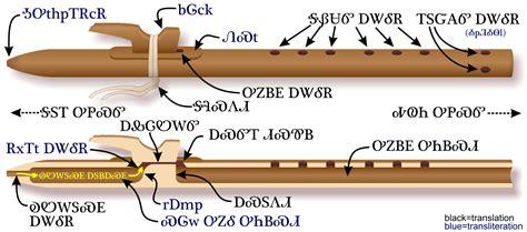 anatomy   native american flute