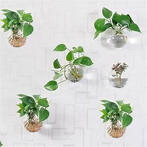 Tillandsien Im Glas : 6 pcs wandbehang pflanzgef e rund glas pflanzschalen aufh ngen air pflanzschalen flower vase ~ Eleganceandgraceweddings.com Haus und Dekorationen