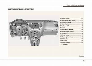 2010 Kia Rio Owners Manual