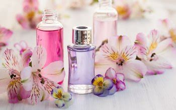perfume hd wallpapers background images wallpaper abyss