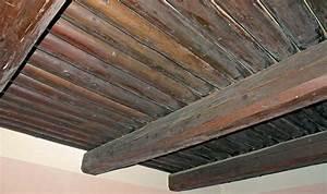 Jak na rákosový strop