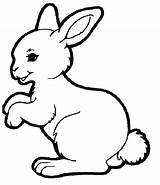 Pages Coloring Bunny Rabbit Colouring Spring Hutch Animal Easter Template Super Animals Bunnies Templates Drawing sketch template