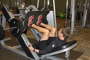 45-Degree Leg Press - Bodybuilding Wizard