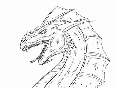 Deviantart Dragon Lineart Drawing Deviant
