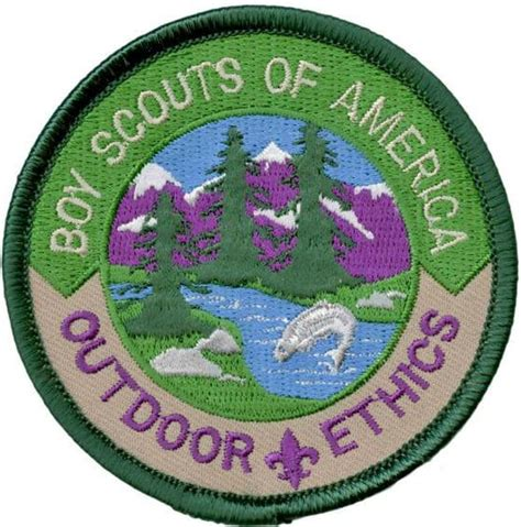 cub scout awards  cub scouts cub scout ideas