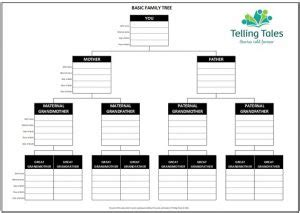 timeline template for story free life story templates family tree and timeline template