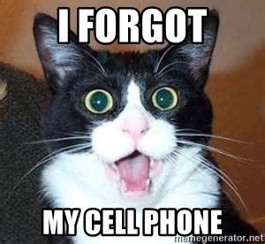 Forgot Phone Meme - i forgot my cell phone freak out cat meme generator