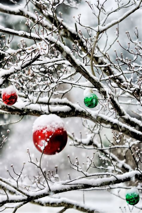 By venkat | december 13, 2014. 60 Beautiful Christmas iPhone Wallpapers Free To Download