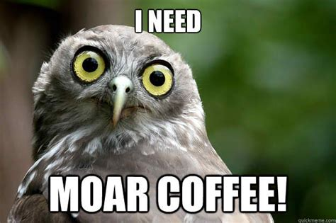 20 Funny Memes For Coffee Lovers National Coffee Day 2017 Racetrac Round Tables Online Argos Survey Table Gumtree Images Reverie At Ikea
