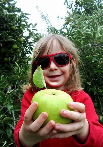 Apple Picking Adventure Did