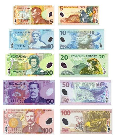 currency converter nz new zealand banknotes paieška banknotes new