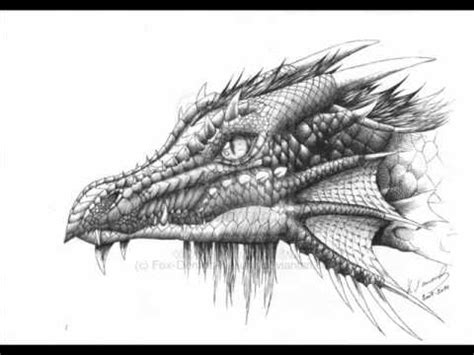 dragon  fantasy drawings youtube
