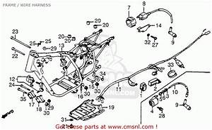 Honda Atc200s 1984  E  Usa Frame    Wire Harness