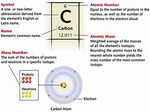Mastered The 114 Elements Of The Periodic Table  Here Are