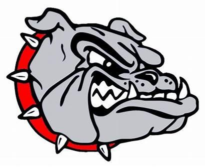 Bulldog Clipart Mascot Bulldogs Cartoon Basketball Gold