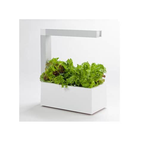 mini potager d int 233 rieur herbie blanc