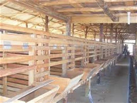 Kandang kambing dibina bertujuan asal untuk menyediakan kediaman yang selesa didiami oleh ternakan. Model Kandang Kambing Yang Baik - Peternakan dan Perikanan