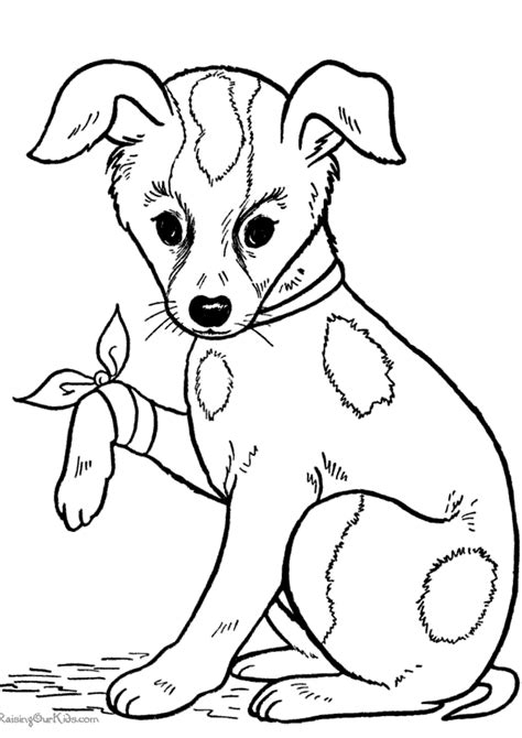 Dog with puppies coloring page to print dor free dog and