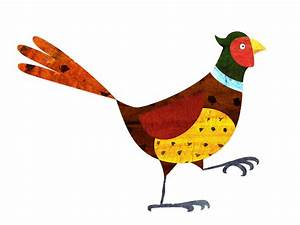 the olly brown blog: Pheasant