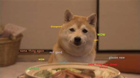 Woww Doge So Disappointed, Pls Don't Delude Doge
