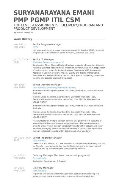 it delivery manager sle resume