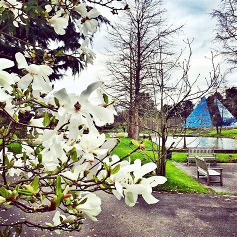 Lieblingsplatz Der Woche Loki Schmidt Garten Typisch