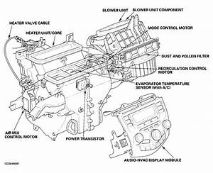 Honda Ac System Diagram  Honda  Free Engine Image For User Manual Download
