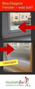 Beschlagene Fenster Innen : fenster beschlagen von innen was kann ich tun hobby pinterest hilfe fenster und haushalte ~ Bigdaddyawards.com Haus und Dekorationen