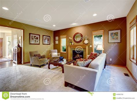 living room  contrast walls  fireplace stock photo
