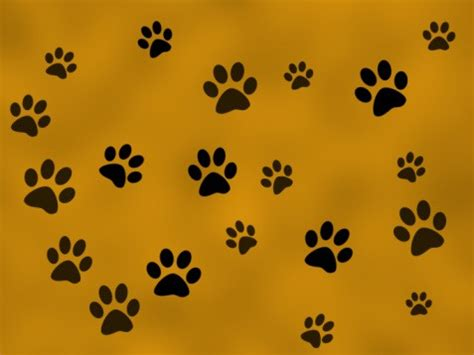 paw prints clipart background png  cliparts