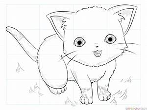 How To Draw An Anime Cat Step By Step Drawing Tutorials