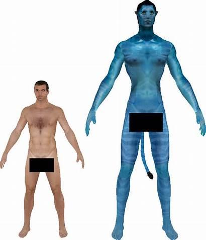 Human Avatar Comparison Height Deviantart