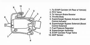 I Need Vacuum Hose Routing Diagram For 1998 3800 Series Ii Supercharged Engine