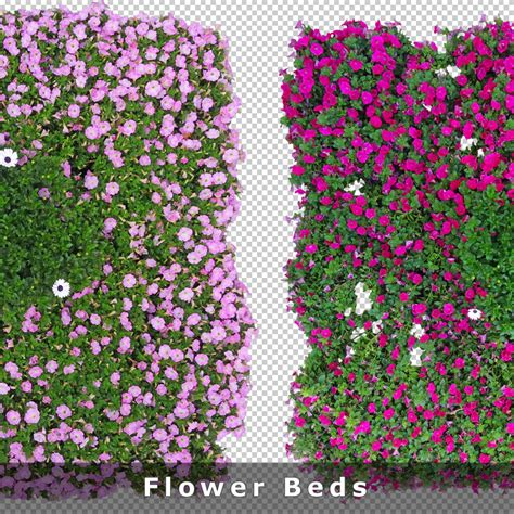 flower bed planner top view flowers cutout plan view images png for garden and landscape planners