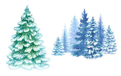 Aquarelle Hiver Illustration De La Forêt Sapins De Noël