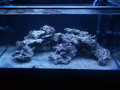 live rock aquascape designs 49 best images about nano reef aquascaping on