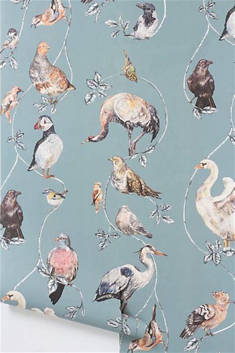 Animal Wallpaper For Home - anthropologie wallpaper the