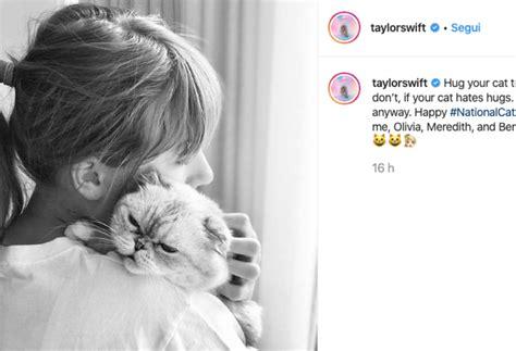 """Il consiglio di Taylor Swift: """"Abbracciate i vostri gatti ..."""