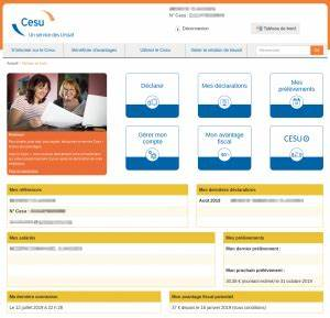 tok presentation chèque emploi service universel cesu aide ordi 49