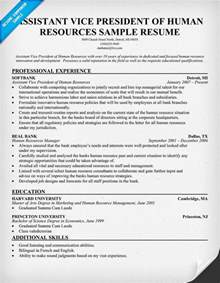 sle cover letter sle resume vp human resources