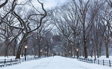 snowwinternature backgrounds smart phones ios tumblr