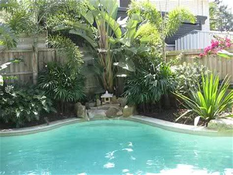 plants for pool area small swimming pool in garden joy studio design gallery best design