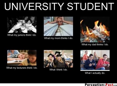 U Of A Memes - university student what people think i do what i really do perception vs fact