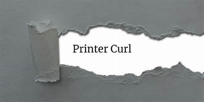 Curl Paper Amato Jason December Banner