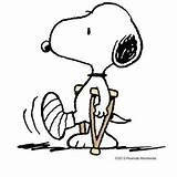Snoopy Crutches Cartoon Foot Broken Peanuts Funny Clipart Soon Brown Leg Clip Well Broke Finally Charlie Woodstock Memes Injury Characters sketch template