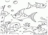 Ocean Coloring Sea Pages Floor Fish Drawing Under Aquarium Printable Realistic Colouring Drawings Kid Scenery Preschool Getdrawings Animals Sketch Paintingvalley sketch template