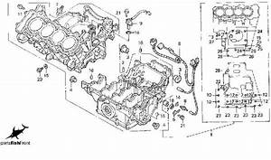 1996 honda cbr 600 rr wiring diagram imageresizertoolcom With 1987 honda hurricane 1000 wiring diagram wiring harness wiring