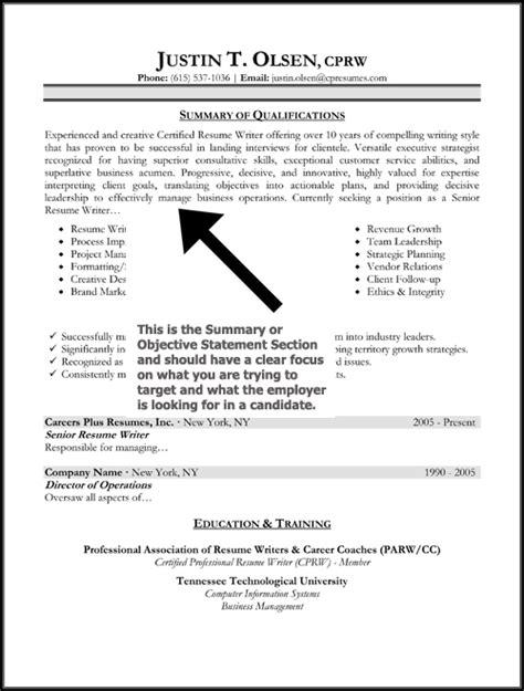 resume summary statement exles berathen