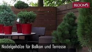 Kühlschrank Für Terrasse : nadelgeh lze f r balkon und terrasse youtube ~ Eleganceandgraceweddings.com Haus und Dekorationen