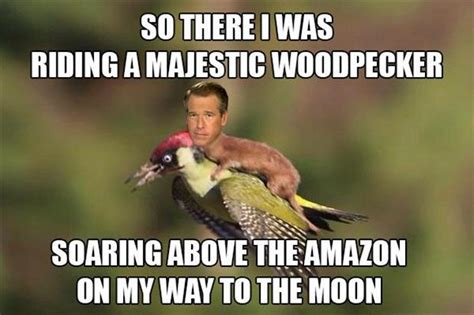 Weasel Meme - the internet had way to much fun with the weasel riding the woodpecker photo 20 pics